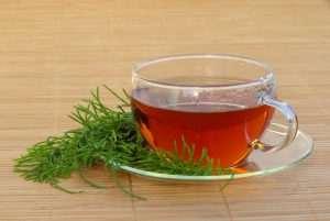 Ackerschachtelhalm Tee