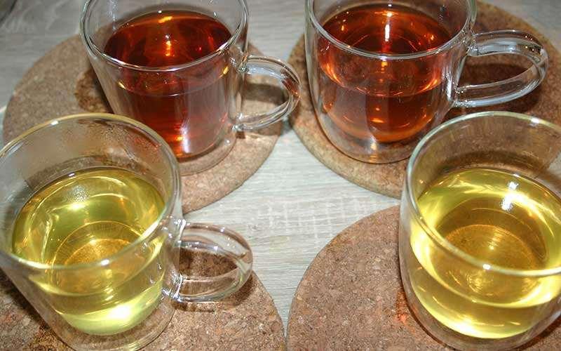 Der Oolong von Deerland Tea im Test