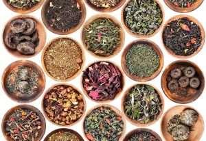 Teesorten - alles rund um Tee